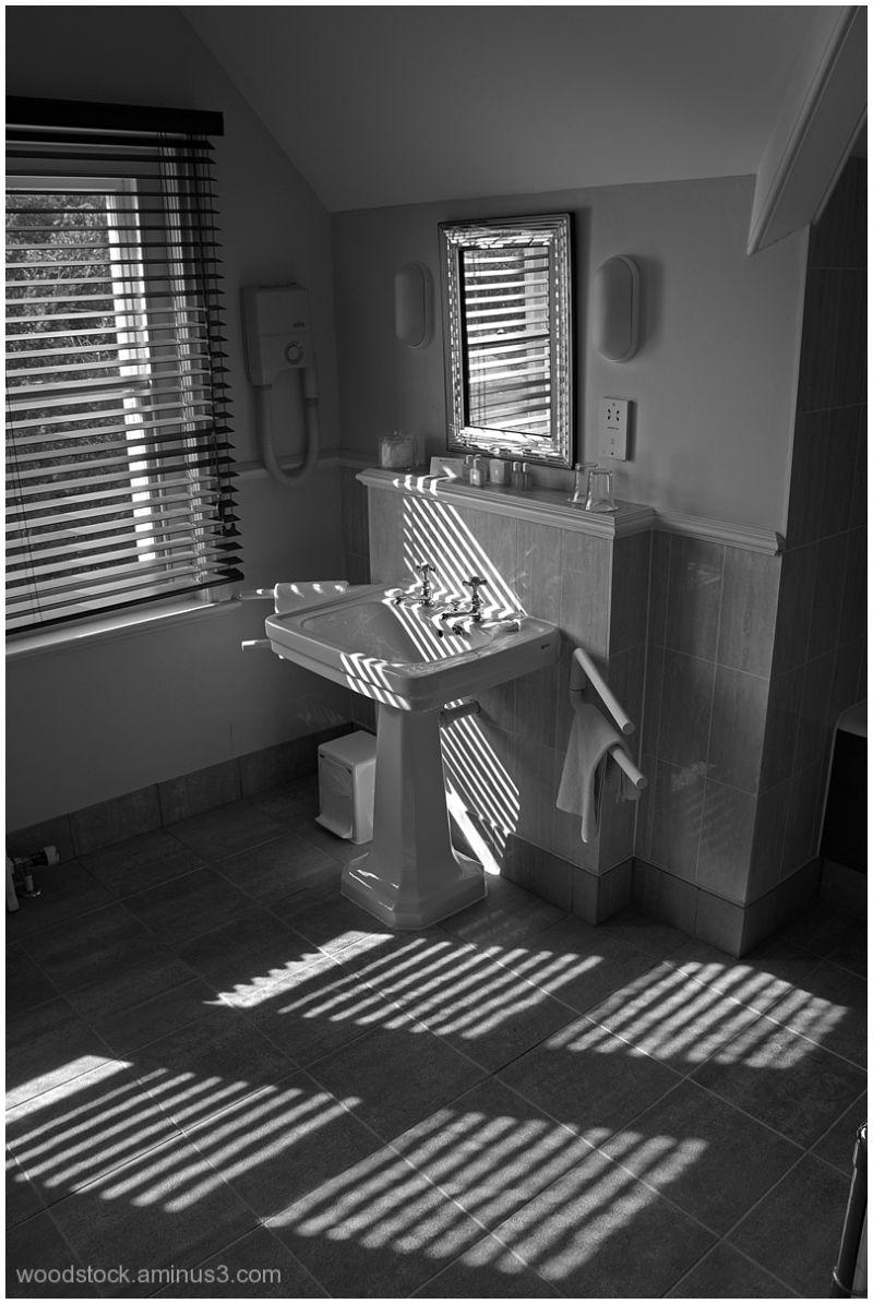 The Hotel Bathroom