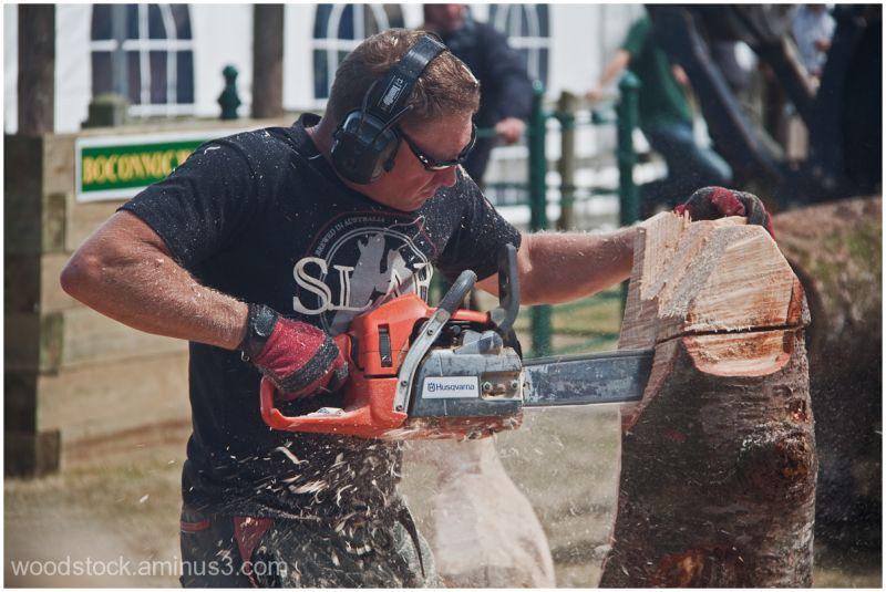 The Chainsaw Artist