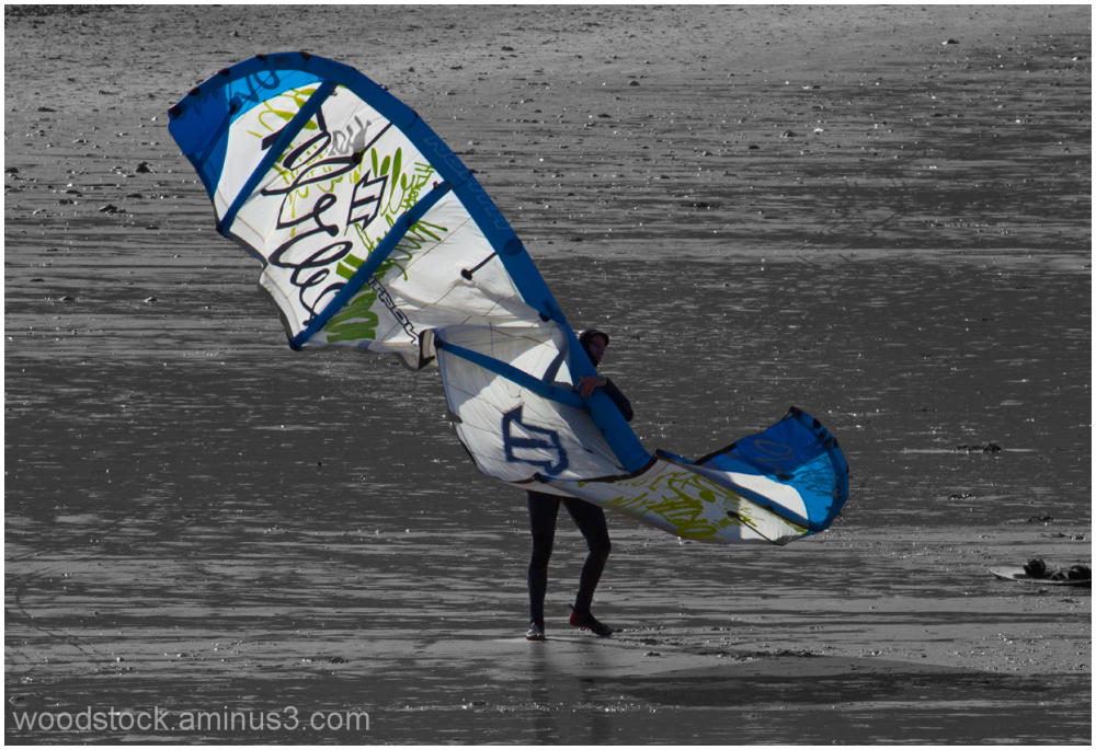 Kite Surfer or Butterfly ?