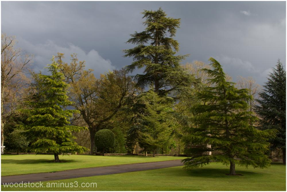 Buscot Park Oxfordshire.
