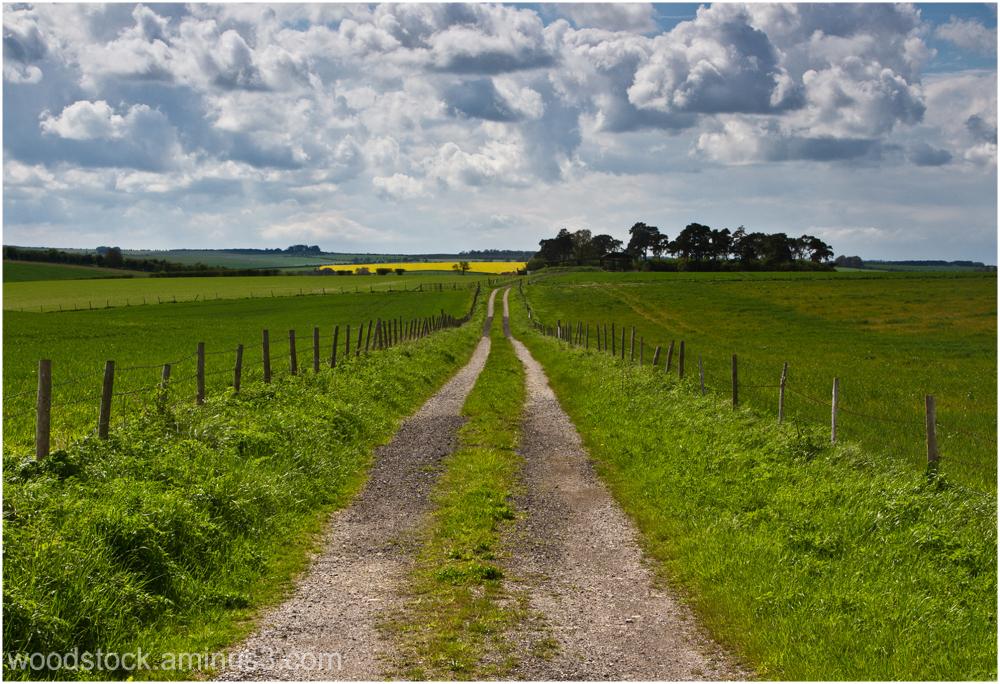 Salisbury Plain 1 of  2