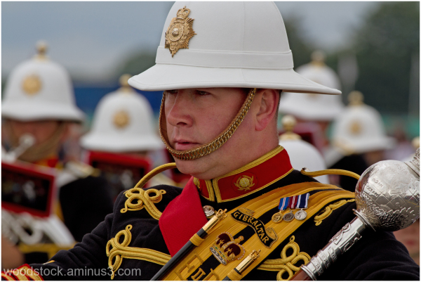 Yeovilton - The Royal Marines Band (3 of 19)