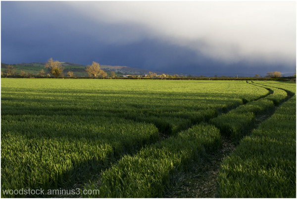 Near Toddington Gloucestershire