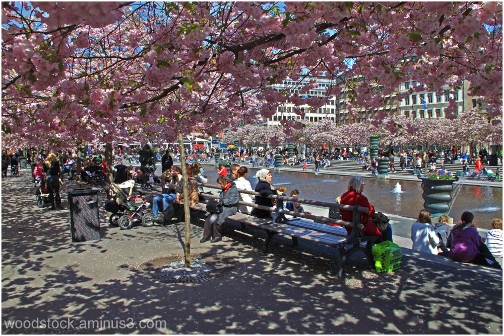 Stockholm in Spring