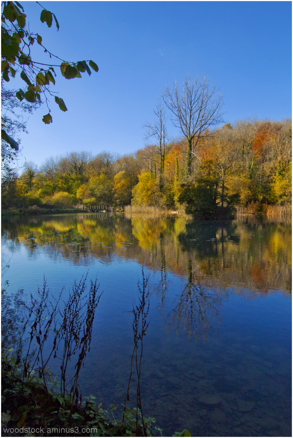 Cherington Lake Gloucestershire in Autumn