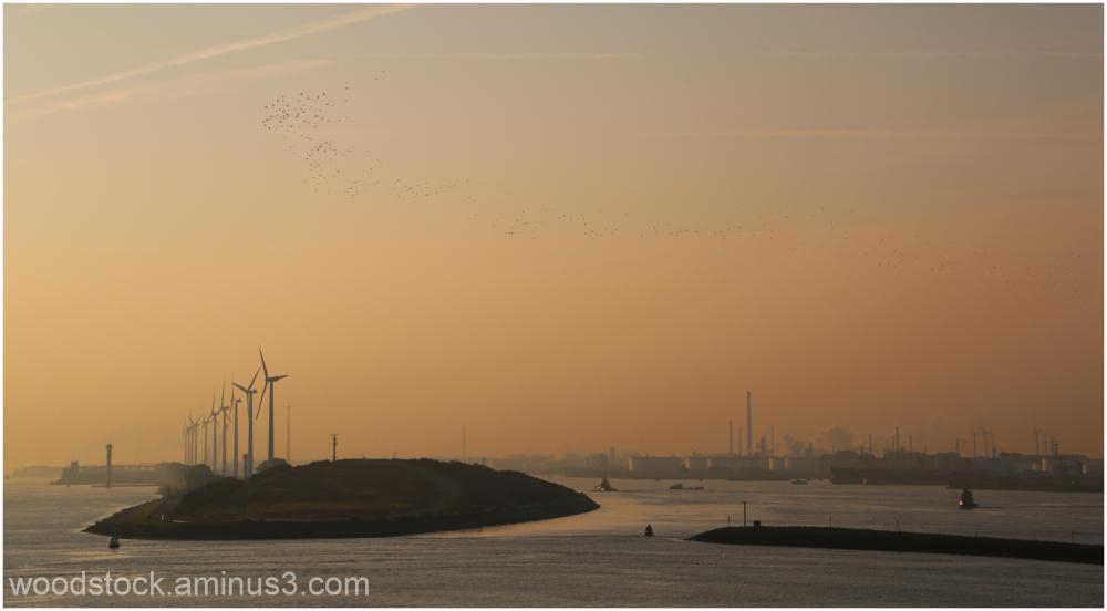 Nieuwe Waterweg Towards Rotterdam