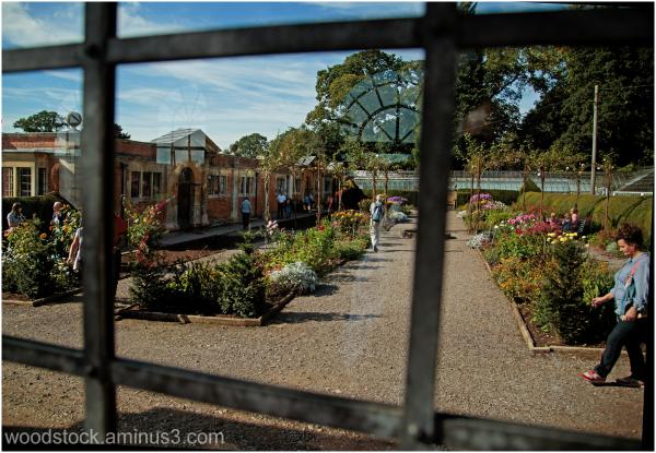 The Kitchen Garden Tyntesfield