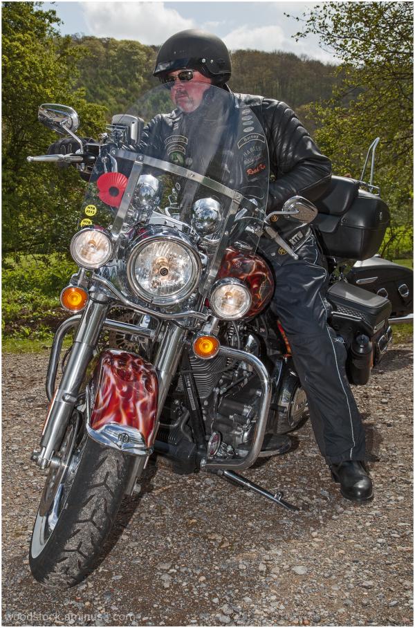 Harley Owner 2