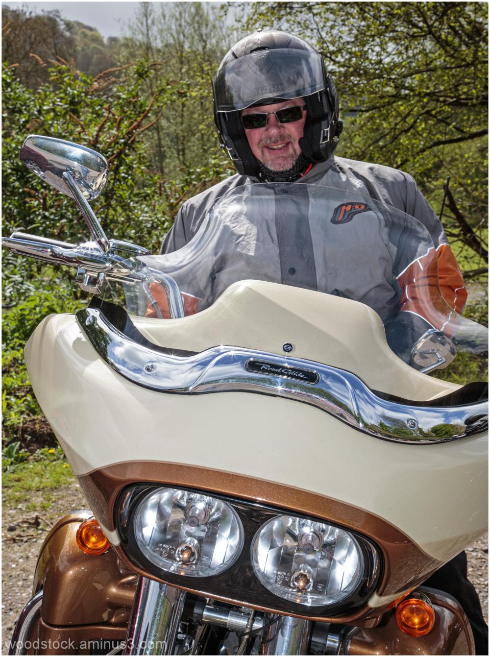 Harley Owner 4