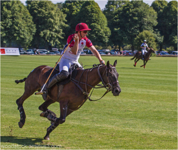Polo - GB V Hong Kong