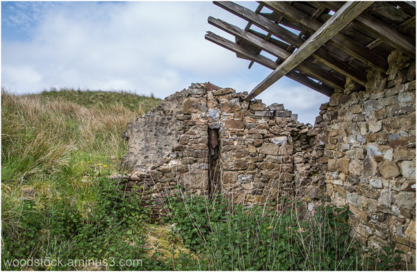 Shepherds Hut - The Fells