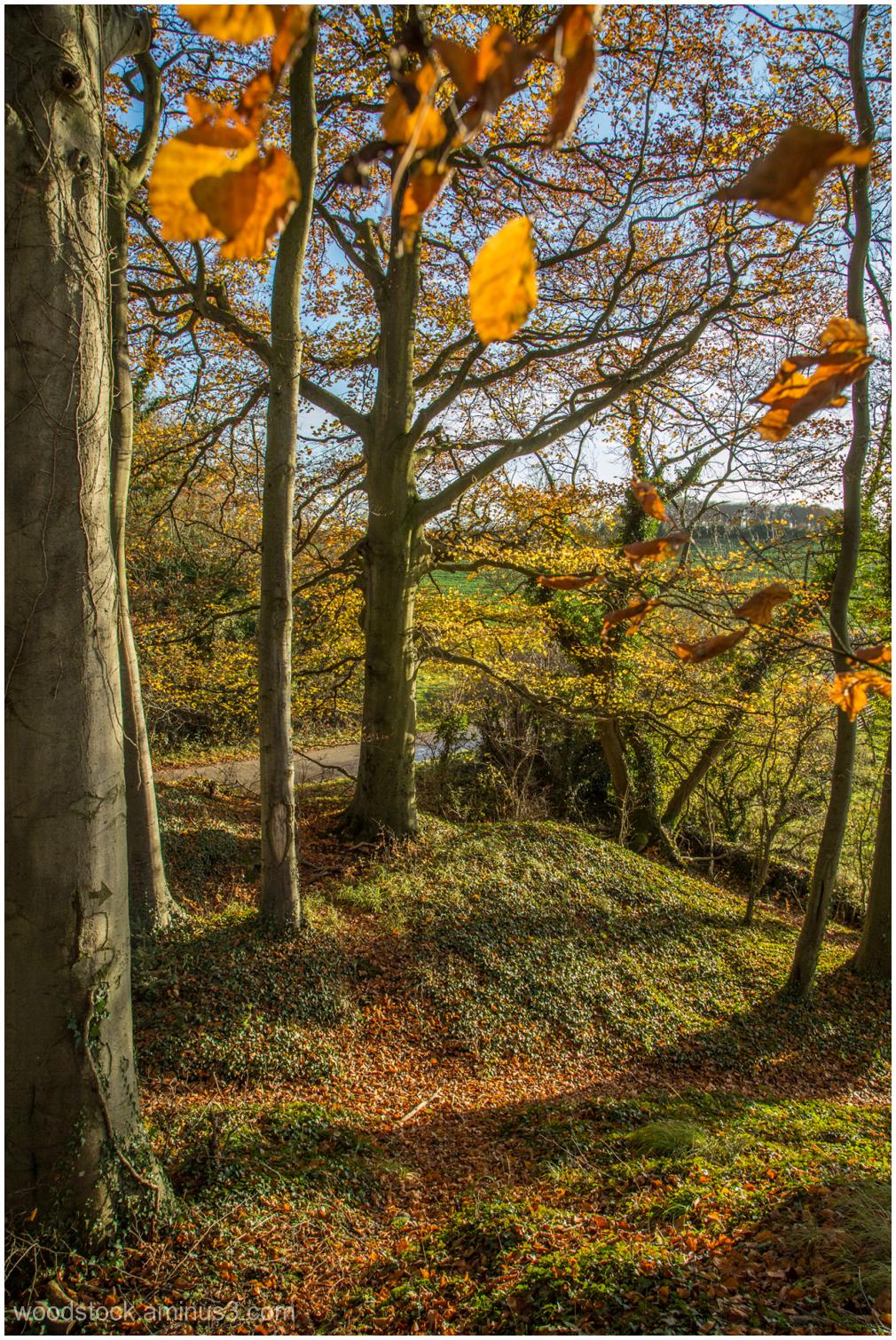 Near Coates, Gloucestershire
