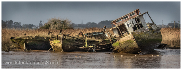 Abandoned on The River Exe