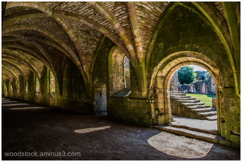 The Undercroft, Fountains Abbey