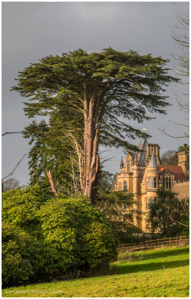 Tyntesfield, Somerset