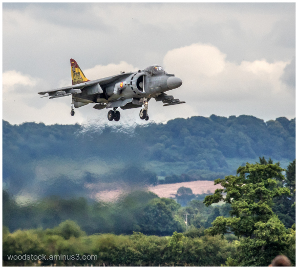 Harrier at Air Day