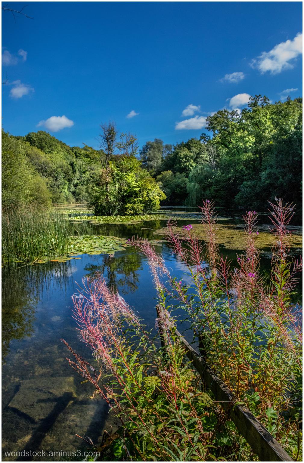 Cherington Lake