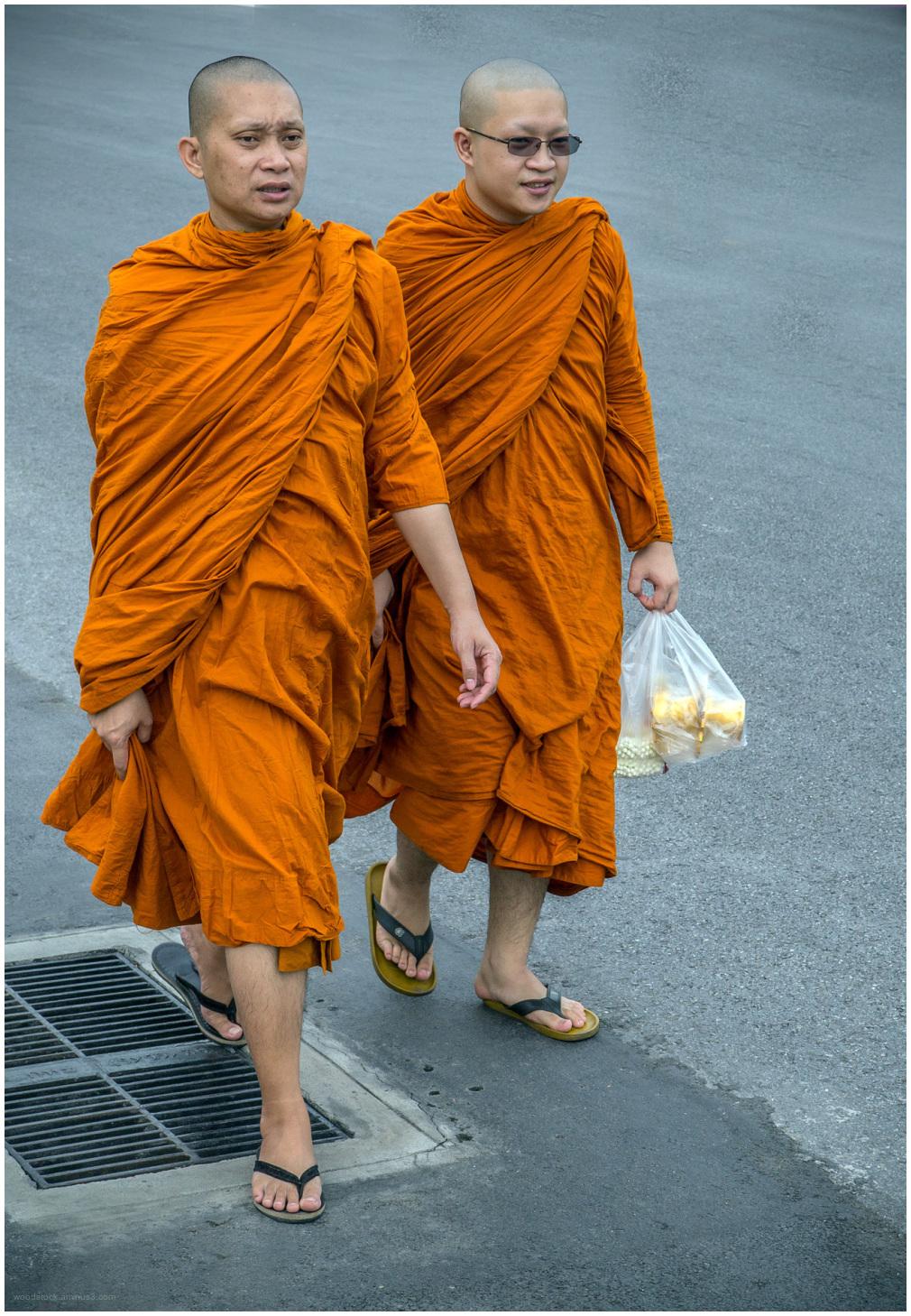 Monks in Viet Nam