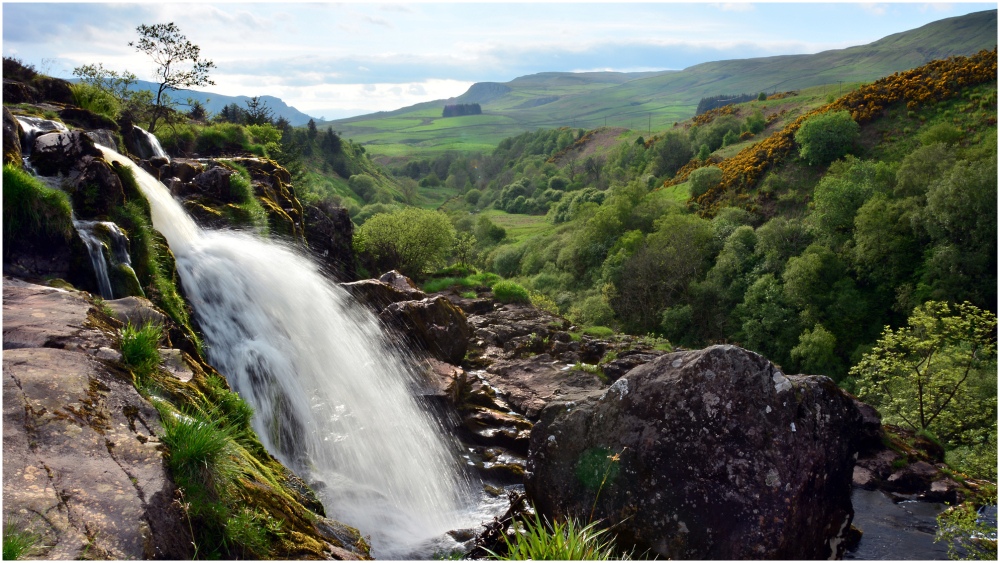 loup of fintry,