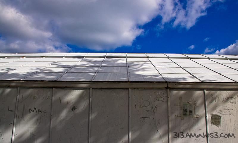 Green House Blue Sky