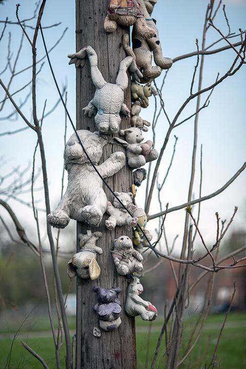 Mourning Tree