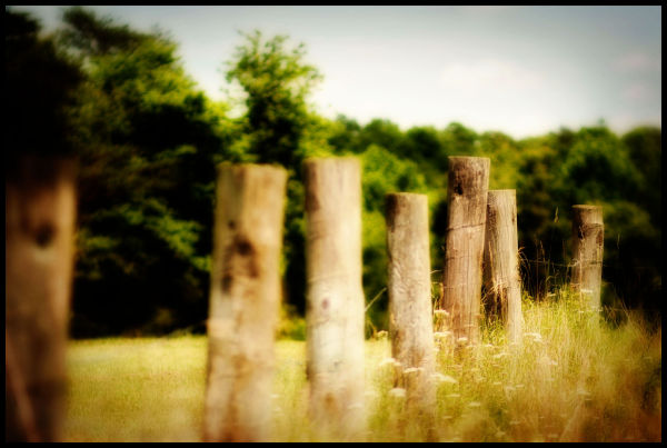 Country Fences