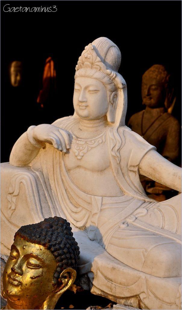 La bande à bouddha