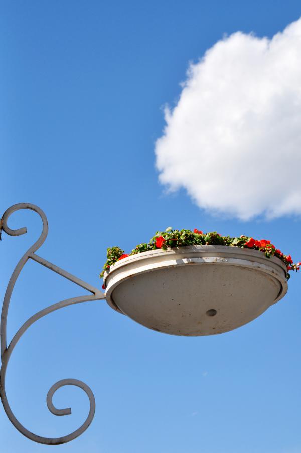 Flower basket in the blue sky