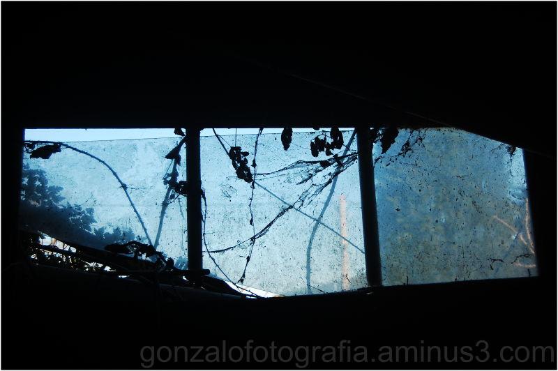 Blue window.