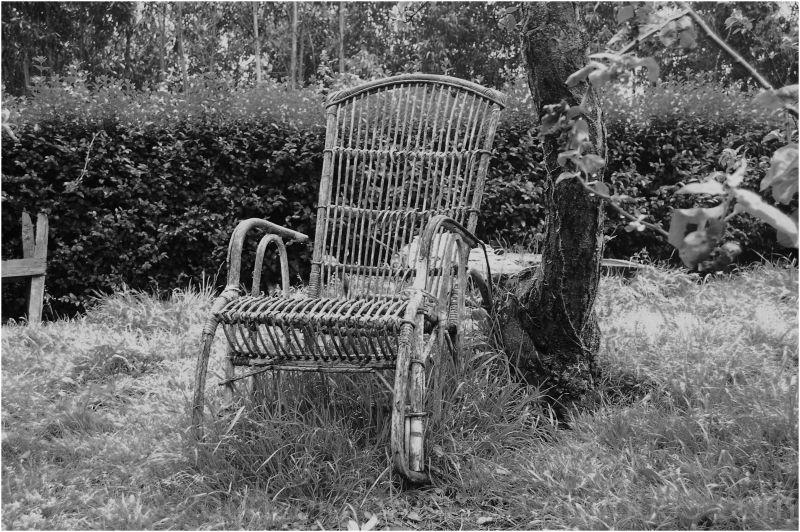 Armanda's rocking chair.