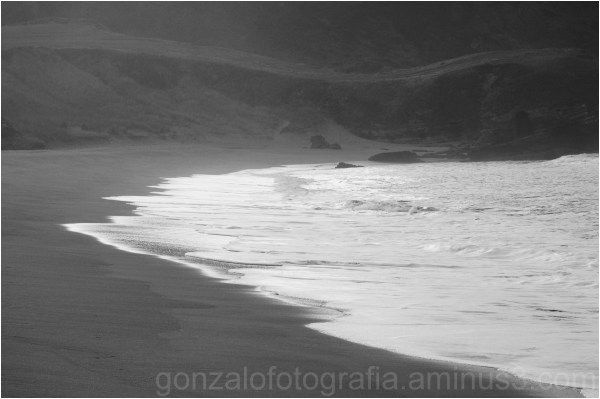 The sinuosity of your shore.