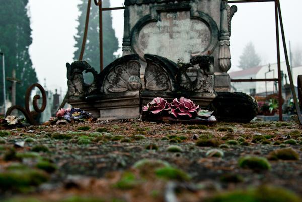fausses fleurs dans un cimetière à cahors