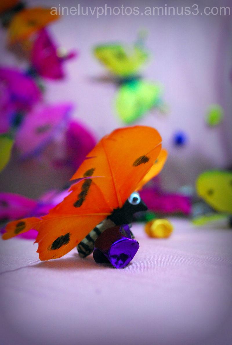 FAKE butterflies~