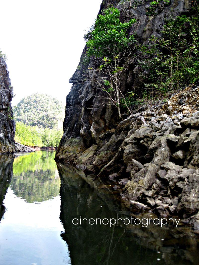 Mangroove Swamp, Langkawi