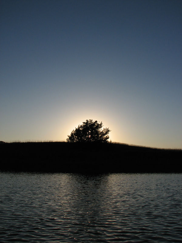 Sun behind tree with water and sky