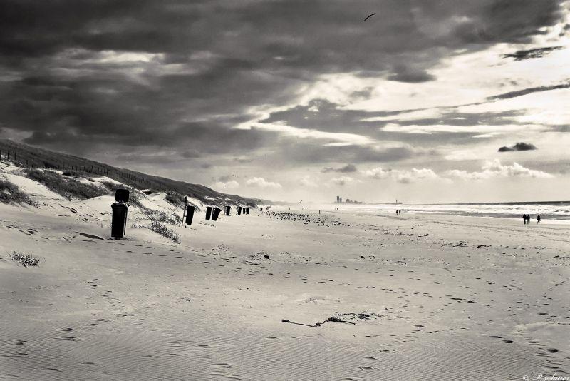 Beach near The Hague
