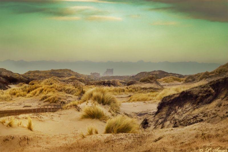 Dune landscape before a storm