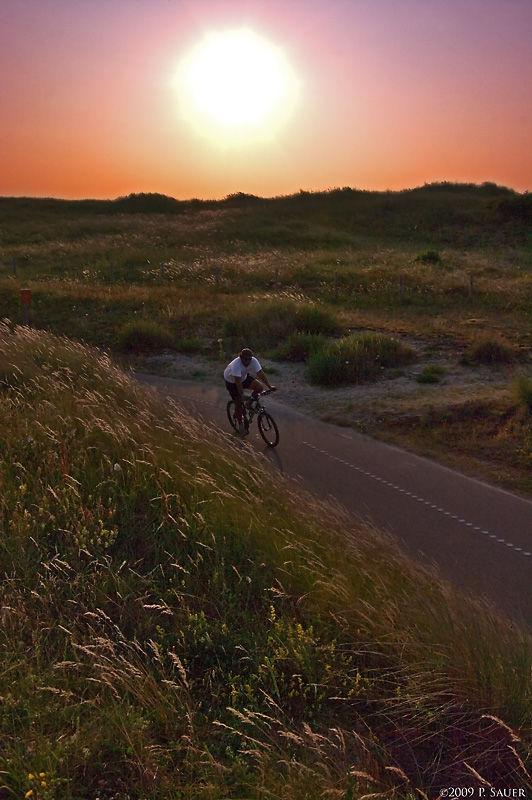 Cyclist at sunset on the Dutch coast