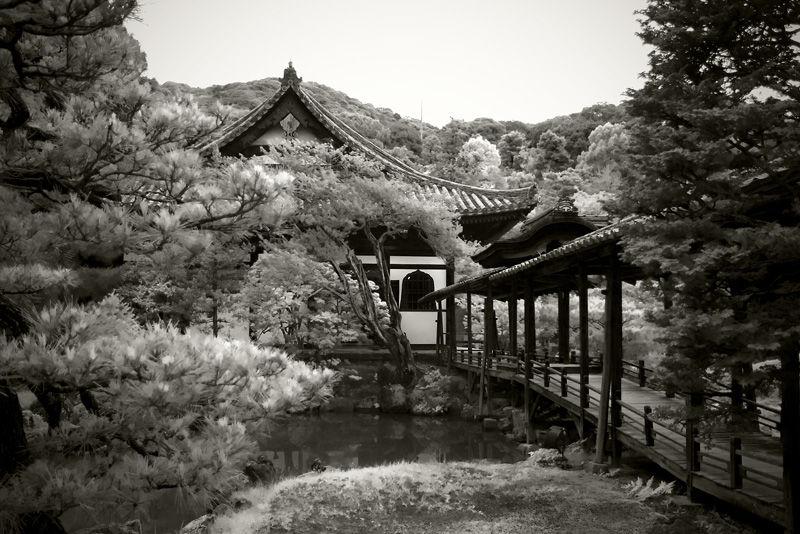 Kodaiji Zen Temple