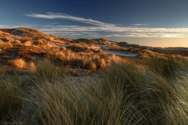 Frozen dunes at dusk