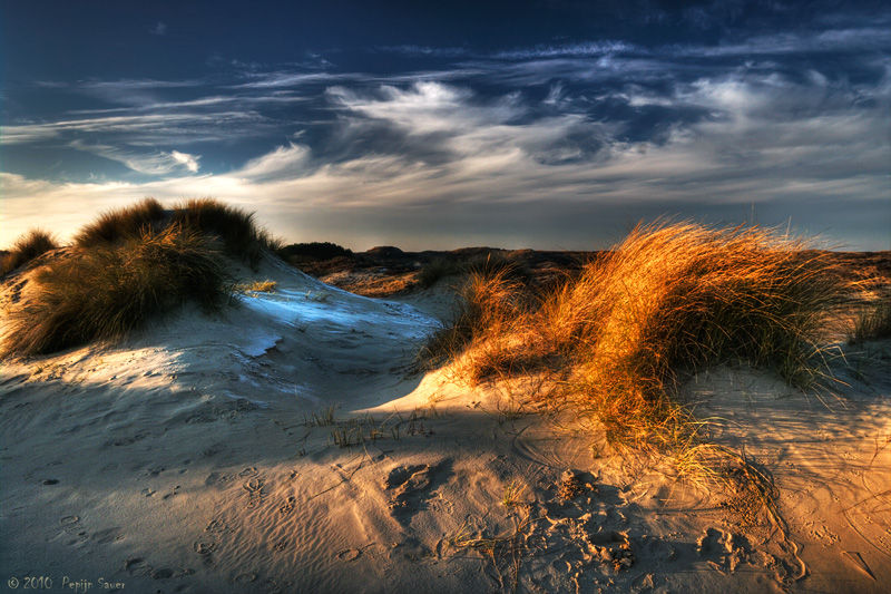 Dunes in late winter light