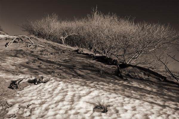 Snow in the dunes