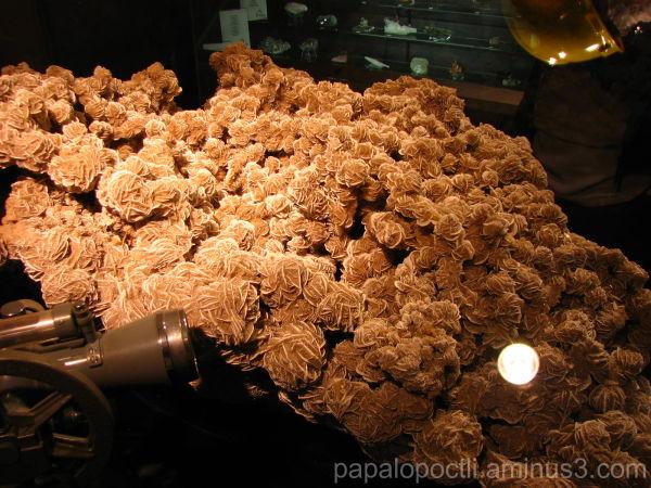 Roca en exhibición en la Mina del Edén, Zacatecas