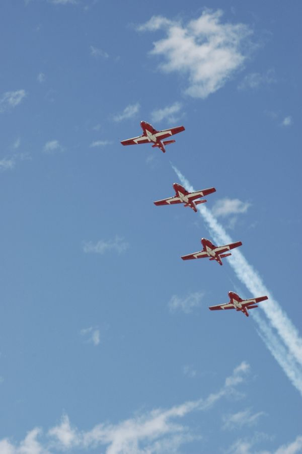 Canadian Snowbirds in one life formation