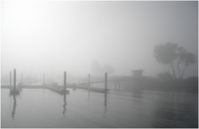 I'll follow you into the dark. [or fog]