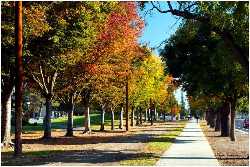 More Autumn Colors!!
