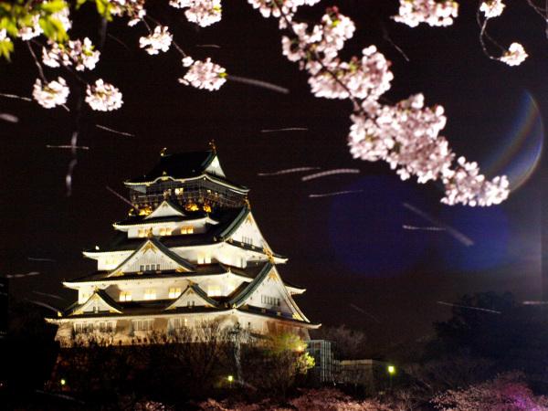 falling sakura petal