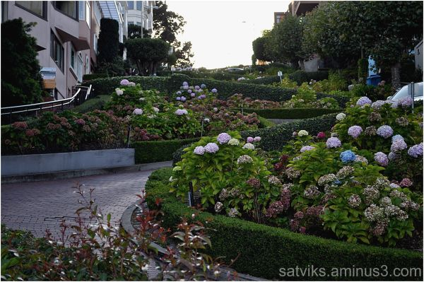 Lombard street - view from below