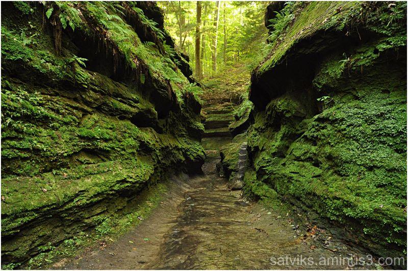Green canyon (3)