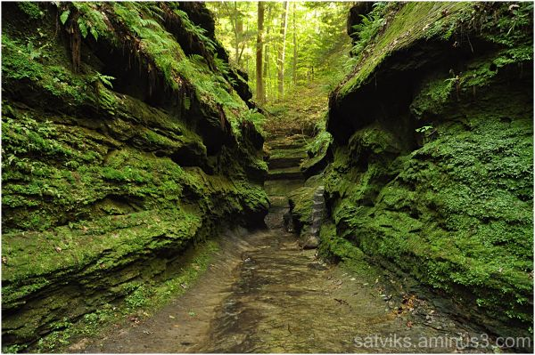 Green canyon (3)